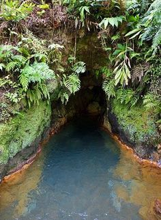 Hot spring, Furnas, Sao Miguel, Azores