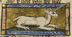 bartolomeus anglikus - unicornus - Szukaj w Google