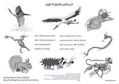 Preschool, Winter, Movie Posters, Animals, Winter Time, Animales, Animaux, Kid Garden, Film Poster