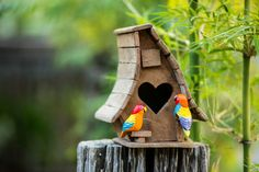 You can bring some birds to your garden or add a fun look by adding one of these cool garden birdhouse ideas to your yard or home.