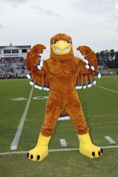 Bam Mascots - Custom Mascot Costume Designers and Manufacturers Golden Eagle, Fursuit, Sports Teams, Mascot Costumes, Tigger, Ronald Mcdonald, Disney Characters, Fictional Characters, Concept