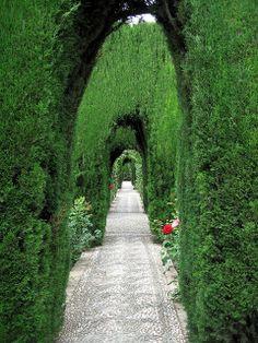 Walkway, Generalife garden, Alhambra, Granada (Spain), by Todd Martin Granada Andalucia, Granada Spain, Alhambra Spain, English Garden Design, Gardens Of The World, Parcs, Moorish, Dream Garden, Garden Paths