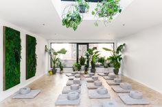How a Vertical Garden Can Improve Your Health