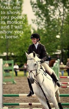 That's my ponys show name Horse Meme, Funny Horses, Cute Horses, Pretty Horses, Beautiful Horses, Equine Quotes, Equestrian Quotes, Equestrian Problems, Ty E Amy
