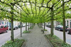 Voorstraat, Willemstad, Netherlands