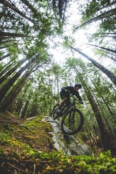 Great perspective! // Mountain Biking // Downhill: