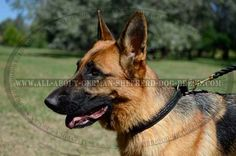 #Leather #Choke #Collar Decorated with Braids $29.90 | www.all-about-german-shepherd-dog-breed.com
