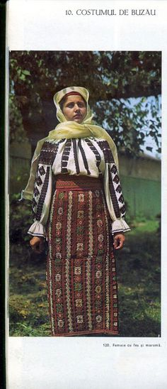 Folk Costume, Costumes, Fes, Hand Embroidery, Cross Stitch Patterns, Sari, Country, Blouse, Gold