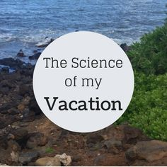The Science of my Vacation: Try it as a student project!