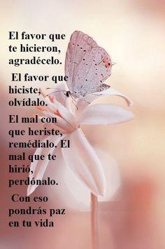 〽️ El favor que te hicieron, agradécelo. El favor que hiciste, olvídalo. El mal con que heriste, remédialo. El mal que te hirió, perdónalo. Con eso pondrás paz en tu vida.