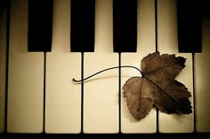 Autumn Leaves (piano recital, age 12)