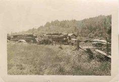 1940s Logging Trucks by Ducky41, via Flickr