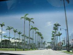 hometown <3 Ft. Lauderdale, FL