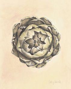 Artichoke III Botanical Print – Vintage Inspired Food Art 8×10