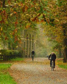 Autunno - Parco di Monza