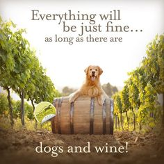 Golden Retriever Canvas by Ron Schmidt. Gifts for Dog Lovers, Gifts for Wine Lovers, Wine Art, Golden Retriever Art, Funny Wine Quotes Golden Retriever Kunst, Golden Retriever Quotes, Golden Retriever Training, Wine Quotes, Dog Quotes, Qoutes, Animal Quotes, Retriever Puppy, Gold Retriever