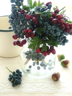 Centerpiece-grapes, berries elevated, maybe with mint or basil for greens?