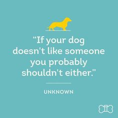 If your dog doesnt like someone you probably shouldnt either. -unknown  -photo credit to the owner #dogs #cats