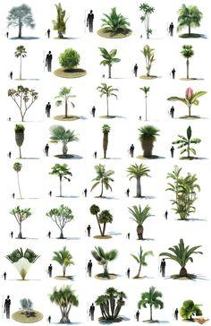 1328782546_designcrown.com_10-10-06-01-3d-models.jpg (1240×1913) - Gardening For…