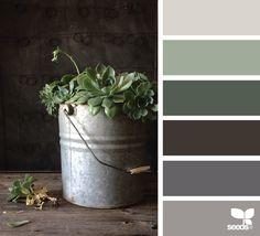 succulent tones - great exterior colors for home Scheme Color, Kitchen Colour Schemes, Colour Pallette, Kitchen Colors, Color Schemes, Room Colors, House Colors, Paint Colors, Decoration Palette