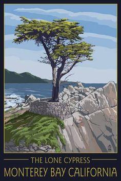 Wall Mural: Monterey Bay, California - Lone Cypress Tree by Lantern Press : 72x48in