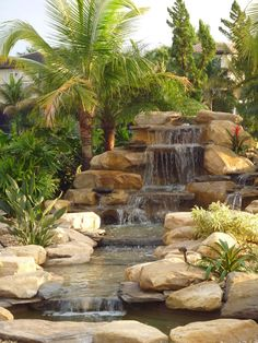 Malayan Coconut Palms with Stone Waterfall Leading into a Pond Landscape 2016 Visit www.RealPalmTrees.com 1-888-RPT-AGRO