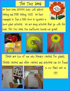 The Tiny Seed and other plant ideas (Kindergarten blog)