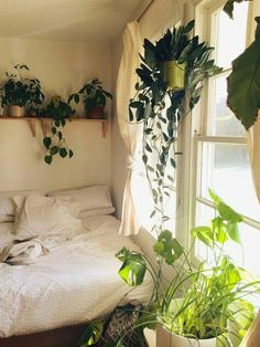 Love all the plants and the lighting into the room.