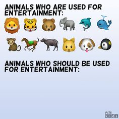 It\'s #WorldEmojiDay! Here at TeachKind we know animals are not ours to use for entertainment, or for any other reason. #teachkindness #animalemojis