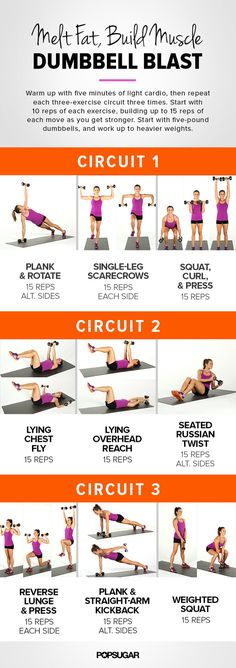 Circuit Workout