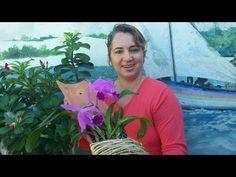 Como plantar orquídea em telha - YouTube