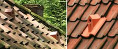 Designer creates birdhouse roof tiles (Wired UK)