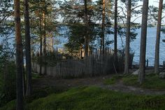 Finland Culture, View Image, Natural, Plants, Finland, Plant, Planting, Planets, Nature