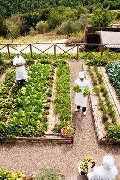 Kitchen garden, Castiglion del Bosco (Photo: Stefano Scatà, The Wall Street Journal)