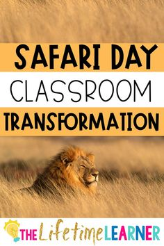 Check out this fun african safari classroom transformation theme for elementary students in first, second, third, fourth, fifth grade. This safari day room transformation will set the stage to engage and is stress-free! It's a worksheet or escape room alternative, and can be used in small groups or partners. 1st, 2nd, 3rd, 4th, 5th graders enjoy classroom transformation ideas. Digital and printables for kids (Year 1,2,3,4,5) #setthestagetoengage #classroomtransformation #mathactivities