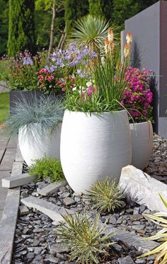 Contemporary fiber cement planters in brilliant white with colorful flowers and . - Contemporary fiber cement planters in brilliant white with colorful flowers and grasses. Great idea for front yard curb appeal or a backyard seating area Small Front Yard Landscaping, Backyard Seating, Plants, Cement Planters, Front Yard, Garden Inspiration, Planters, Summer Outdoor Decor, Backyard Seating Area