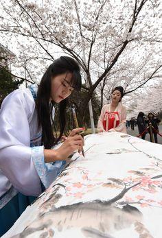 Photos : Cerisiers en fleurs dans l'est de la Chine Capitole-Aktuell Daily Infos @Osvaldo_Villar @Magisterwines