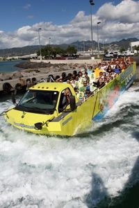 Hawaii Duck Tour: East Oahu Sightseeing