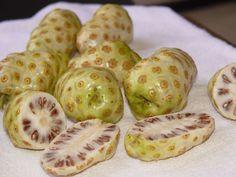 Morinda Fruit