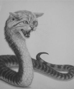 Cat snake? The stuff of nightmares.