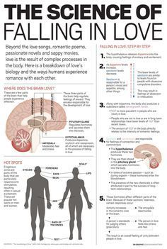 Psychology infographic and charts Male & Female Erogenous Zones and the Science of Falling in Love Infographic Description Male & Female Erogenous Zones Science Of Love, Brain Science, Biology Of Love, Science Chemistry, Science Facts, Med Student, Female Erogenous Zones, Romantic Poems, Romantic Gifts
