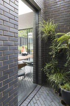 Courtyard home for an enigmatic feline, Mrs Custard and her owners Sustainable Architecture, Interior Architecture, Interior Design, Side Return Extension, Courtyard House, Outdoor Living, Outdoor Decor, Brickwork, Custard