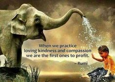Practicing loving kindness generates significant increases in happiness all around.