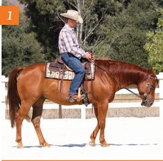 How to Improve Your Horse's Lazy Backup - Horse&Rider Equestrian Boots, Equestrian Outfits, Equestrian Style, Equestrian Fashion, Riding Hats, Riding Helmets, Riding Clothes, Riding Outfits, Riding Horses