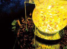 花魁(金魚鉢)/ アートアクアリウム展, 2011