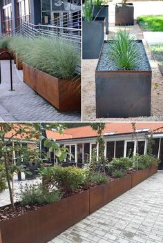 Steel planter boxes provides privacy and art.