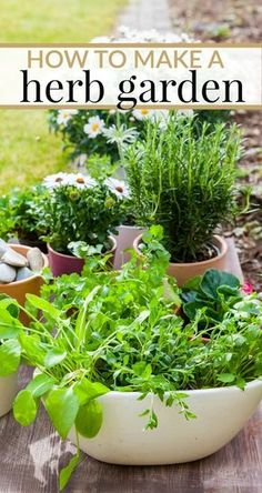 How to make a herb garden. Tips for whether you want to grow your herbs in your yard or in the house.