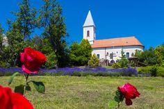 A Balaton-felvidék 8 gyöngyszem falva: káprázatos tájak várják a pihenni vágyókat - Utazás | Femina