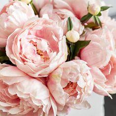 Pink Silk Peonies in White La Vie En Fleurs Box - 3 Sizes Available - Medium