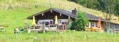 Dandlalm, Röthelmoos, #Ruhpolding, #Wanderung,#Tourismus,#Chiemgau,#bayern,#bavaria
